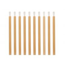 Eco-Friendly Disposable Bamboo Lip Brushes (25)