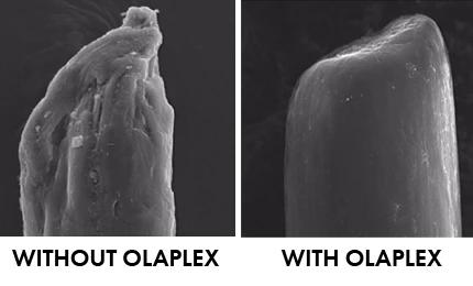 Olaplex Before/After